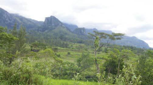 002Trekking_East_Timor